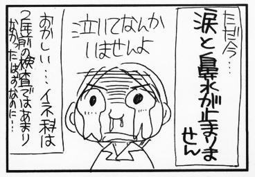 イネ科の花粉症?①