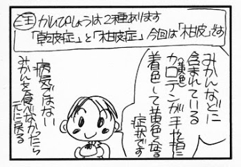 柑皮症NO.1決定戦!