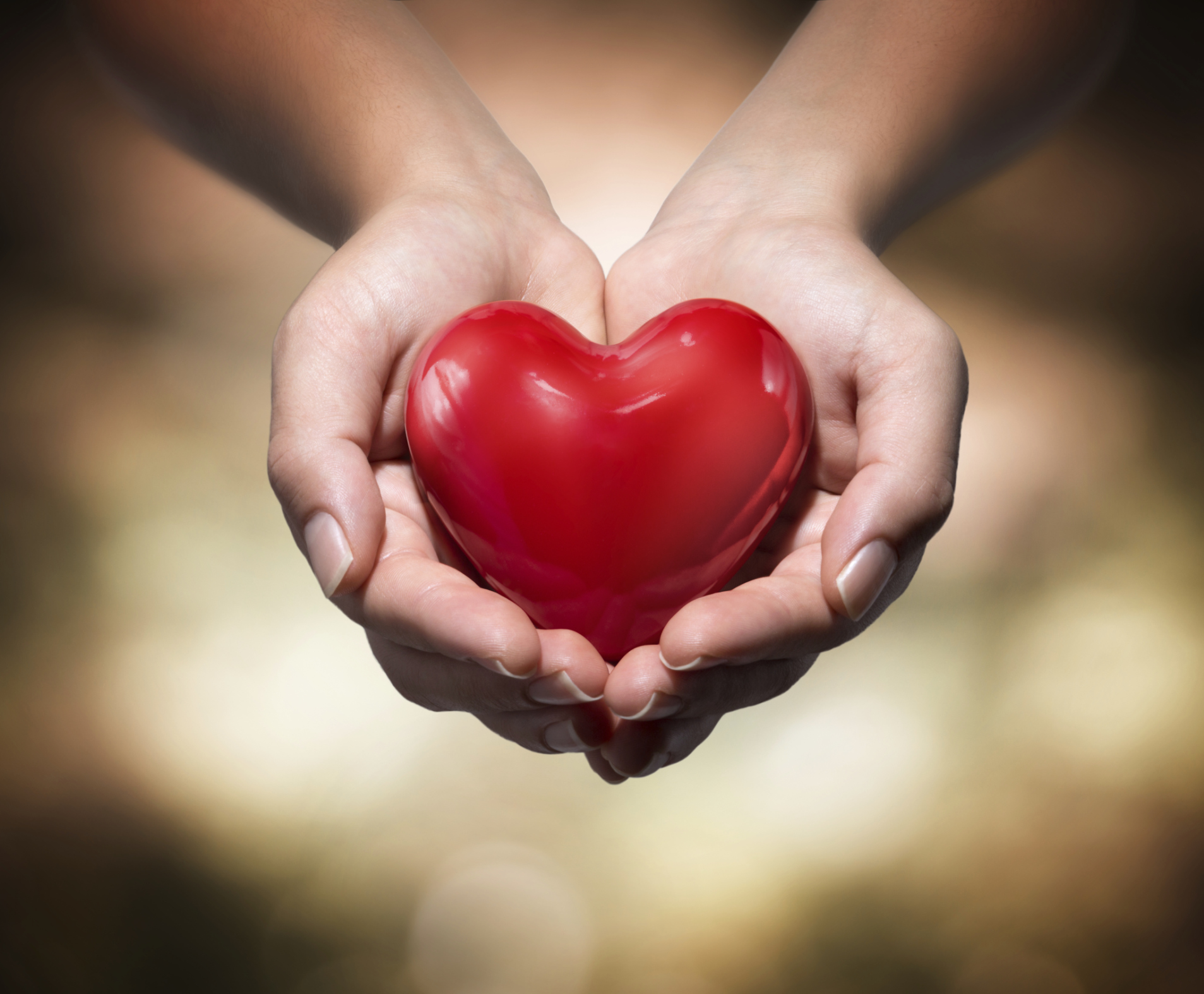 donation of life - red heart